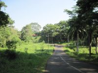 Jalan_kampus_nan_asri