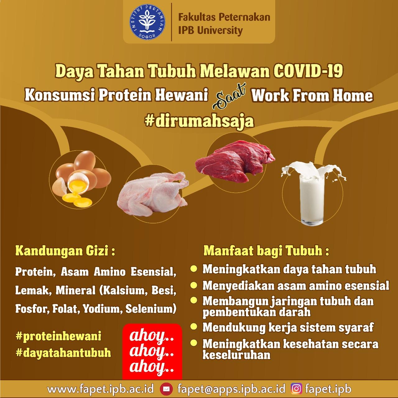 Konsumsi_protein_Hewani